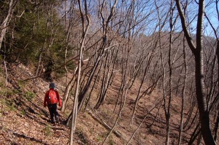 12登山道