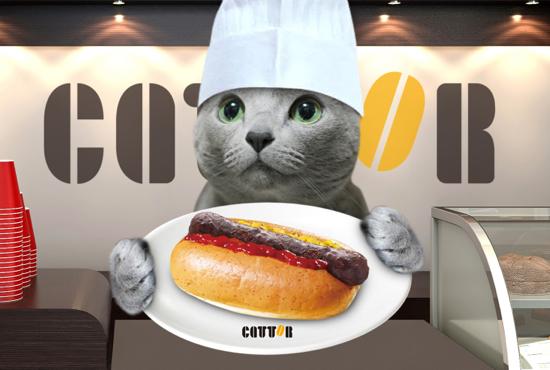 cattor25