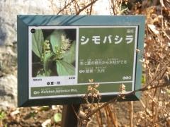 greencenter150103-102.jpg