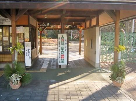 greencenter150103-103.jpg