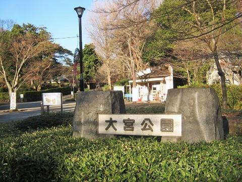 oomiya141223-110.jpg