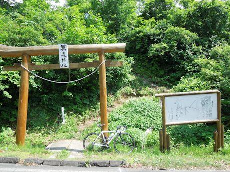 DSCN7084_torii.jpg