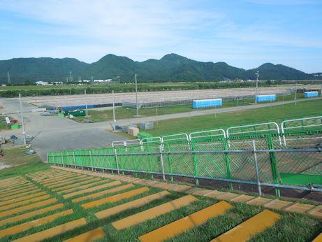 DSCN7462_hanabi.jpg