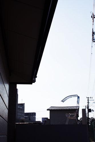 IMG_7618.jpg