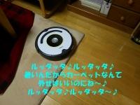05_201507131737315e2.jpg