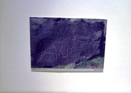 KIMG1915 (1)