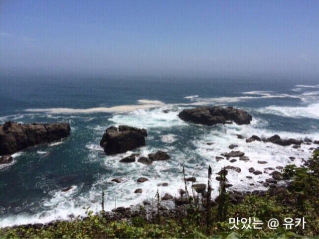 宮崎の海②