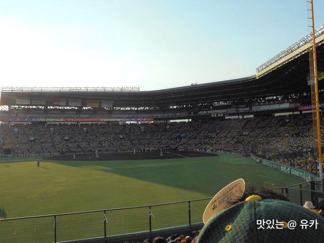 甲子園球場⑤
