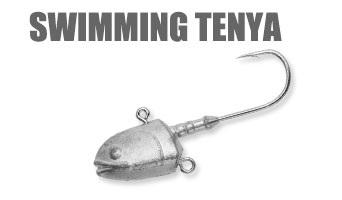 swimming_tenya.jpg