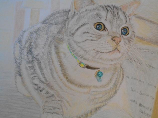 こはくの鉛筆画