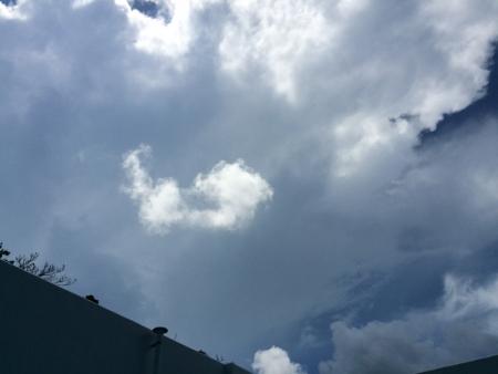 頭上の積乱雲