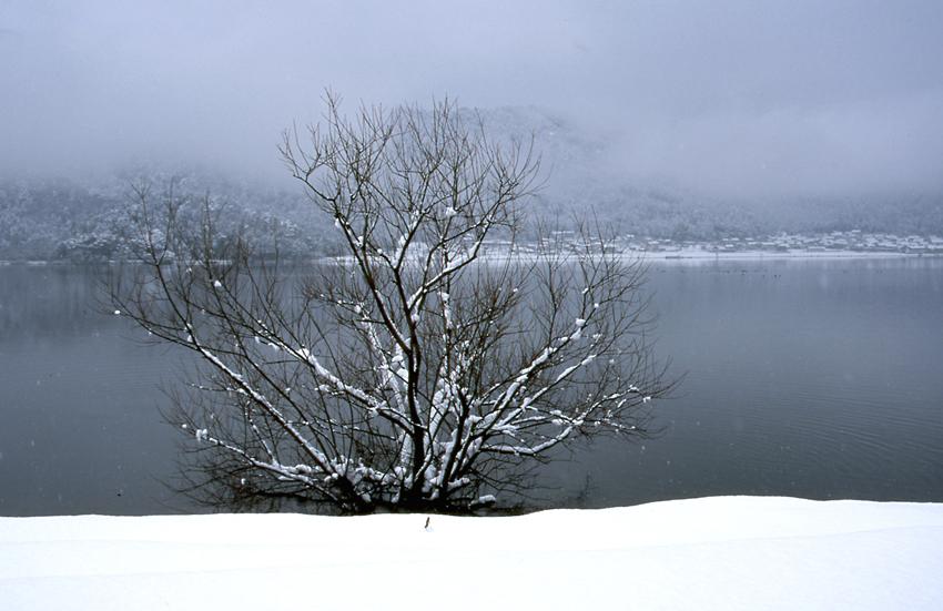 余呉湖(PROVIA100F)01