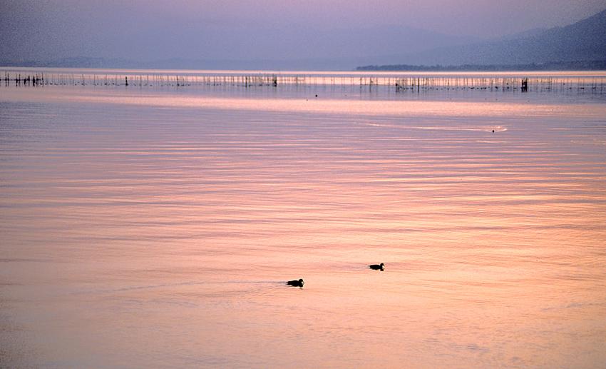 琵琶湖夕景02
