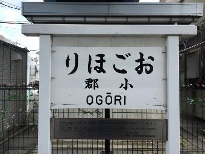 IMG_3139.jpg
