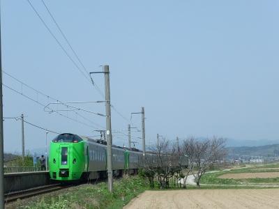 P1110231.jpg