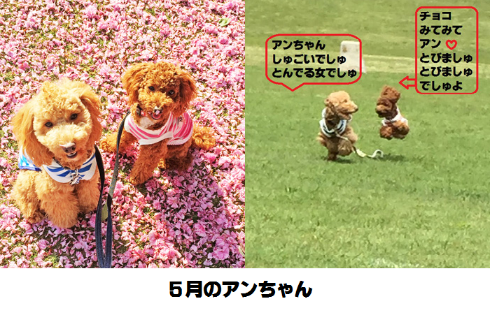 20150620111705152.png