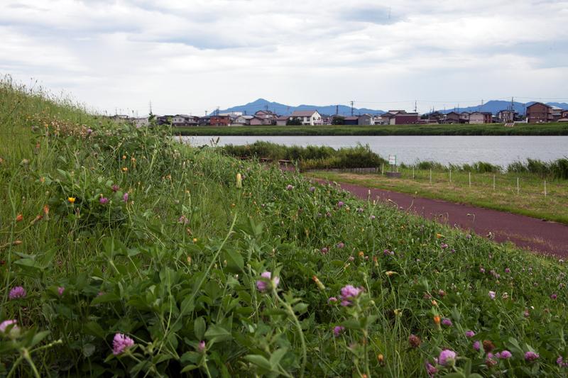 関川堤(米山)