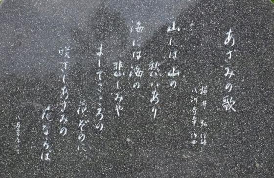 s-15年6月24日 (26)