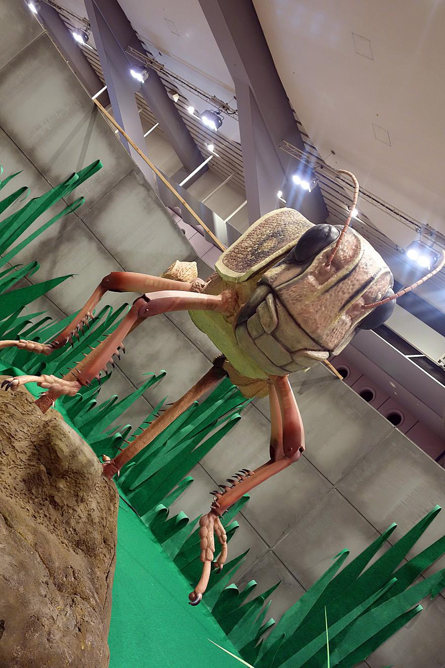 巨大昆虫 (9)