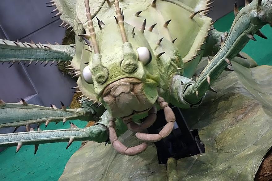巨大昆虫 (006)