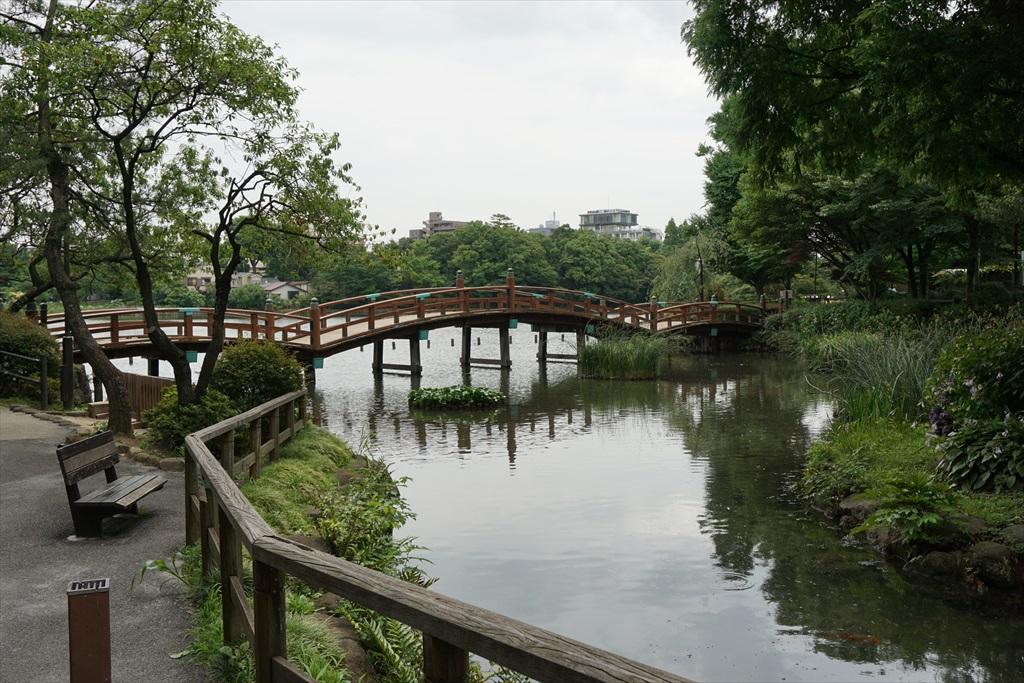 池月橋付近からの眺め_1