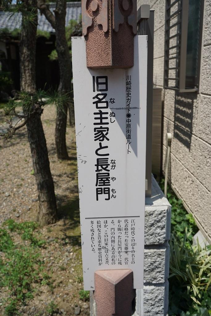 DSC00644_R.jpg