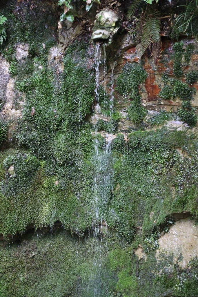 不動の滝_1