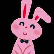ウサギ バニー