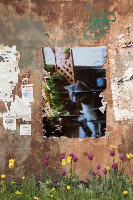PhotoFunia-1435935379.jpg
