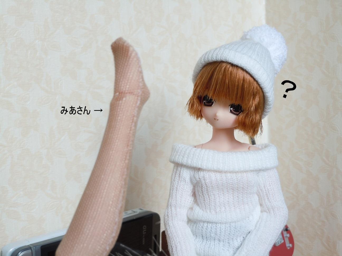 DSCN4610a.jpg