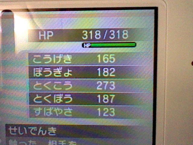 7243.jpg