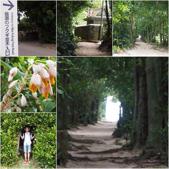 ゆうブログケロブログ沖縄2015 (107)_R