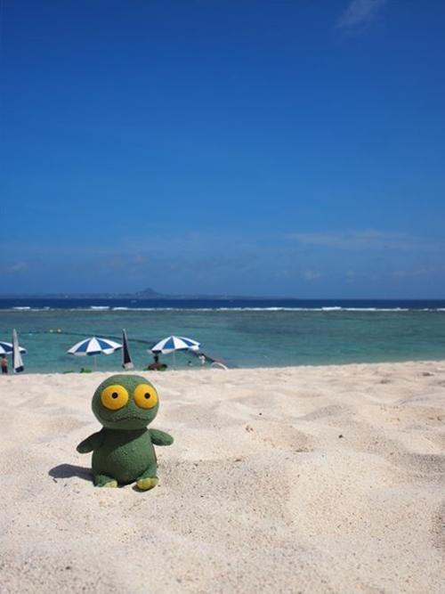 ゆうブログケロブログ沖縄2015 (59)_R