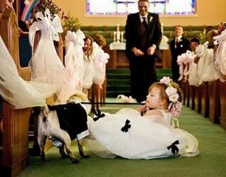 海外おもしろ結婚式画像_子供と犬