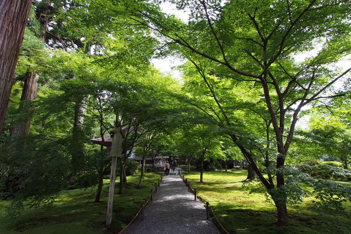20150628_sanzenin-05.jpg