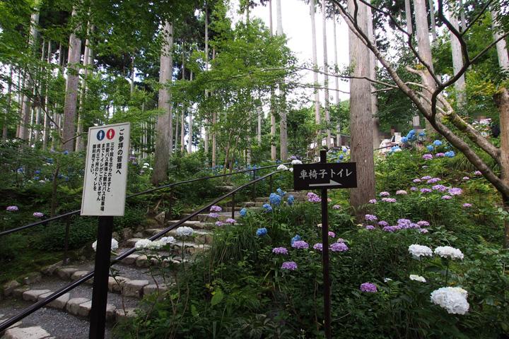 20150628_sanzenin-09.jpg