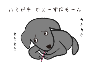 coco072801.png