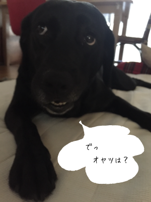 coco073003.png