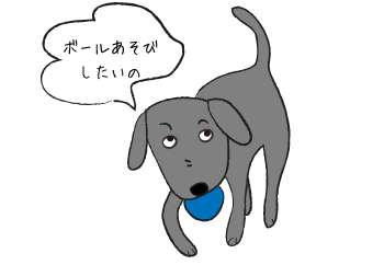 ボールあそびをしたい犬
