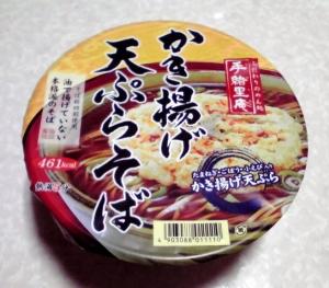 手緒里庵 かき揚げ天ぷらそば(2014年)
