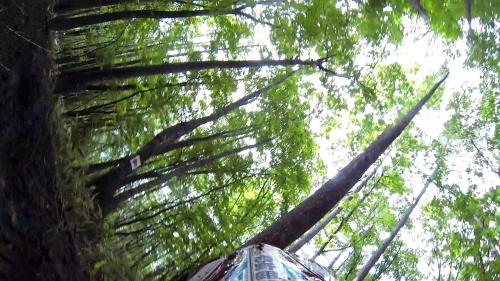 20150719 WEX爺ヶ岳 004