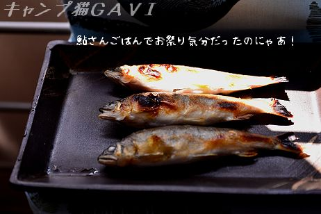 150809_4251.jpg