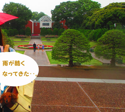 2015-05-yokohama33.jpg
