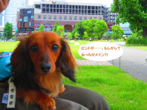 2015-06-yokohama11.jpg
