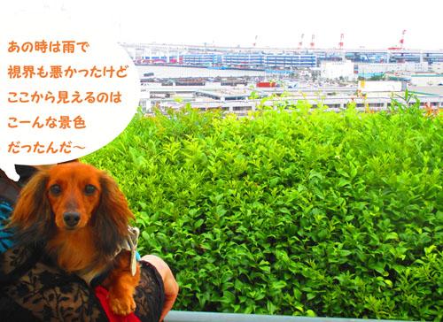 2015-06-yokohama43.jpg