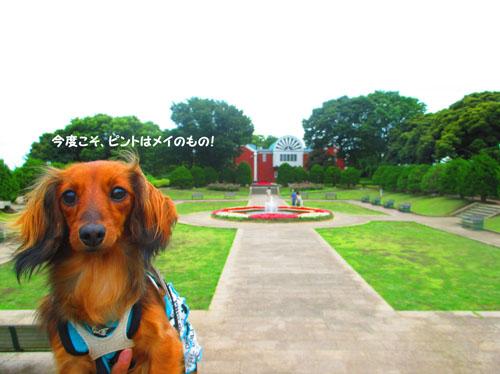 2015-06-yokohama45.jpg