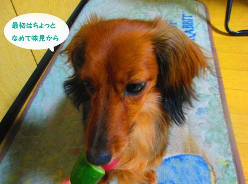 2015-07-cucumber9.jpg