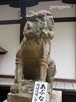 14izumia17.jpg