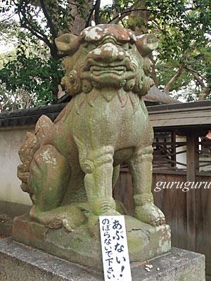 14izumia18.jpg