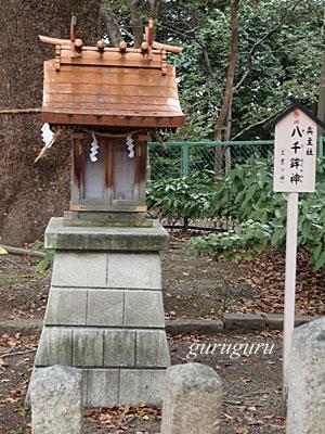 14izumia22.jpg